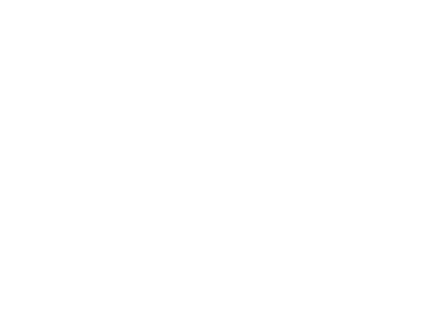 Gig & Conference pass